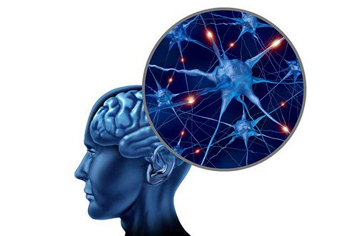 Bổ sung GABA theo đường uống có lợi ích với bệnh động kinh